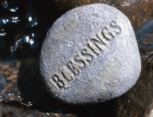 God Has Blessed Us – BE BOLD – March 31, 2019