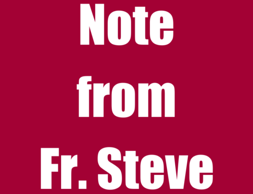 7.9.20 Update from Father Steve