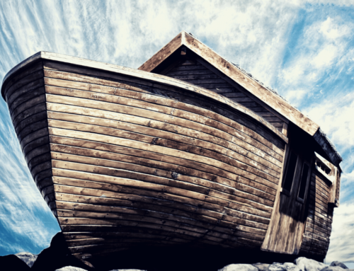 Noah and the Ark: Protection from the Watery Chaos