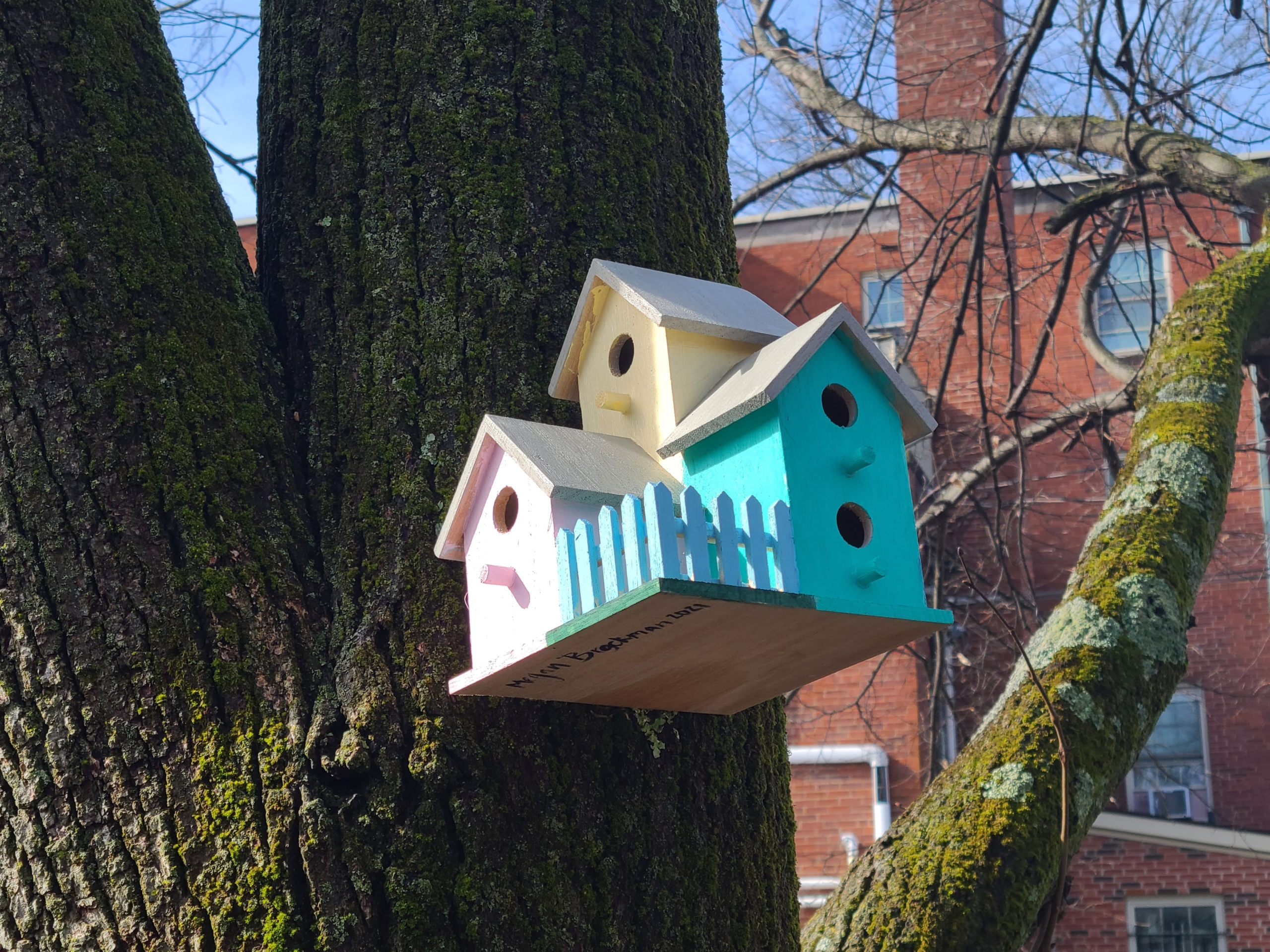 Care for Creation Birdhouses